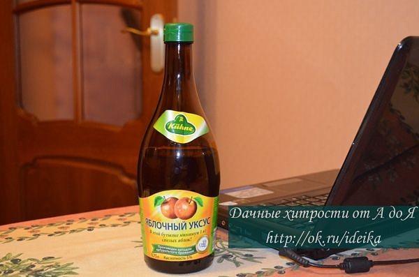 yablochniy-uksus-vanni-vaginalniy