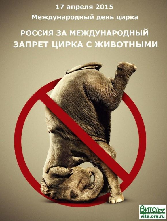 circus cruelty