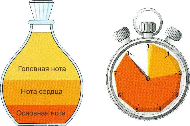 Как сделать крем в домашних условиях  Рецепты для красоты