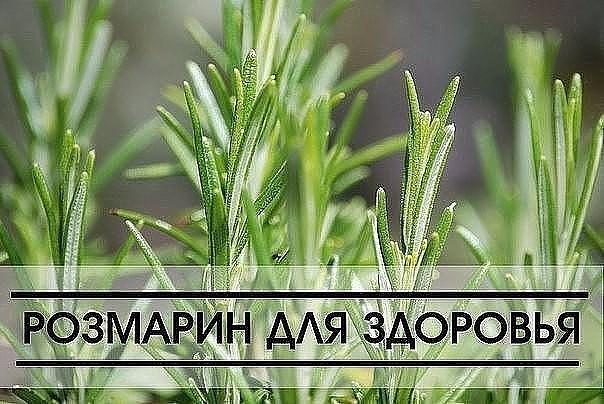 zud-zhzhenie-vo-vlagalishe-boli-pri-mocheispuskanii