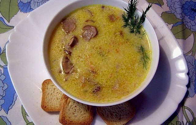 Предлагаем вам пошаговые рецепты супов из белых грибов, в которых подробно написано, как приготовить суп из белых грибов.