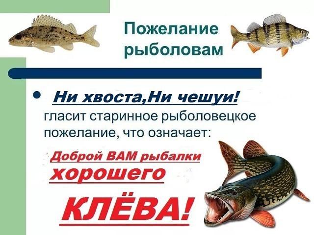 может другие, что желают рыбаку перед рыбалкой она