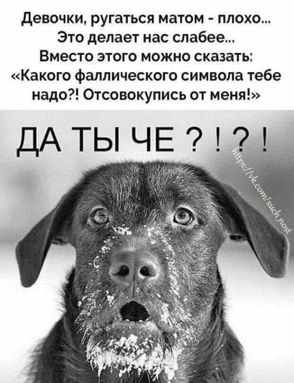 ругается русская грязно