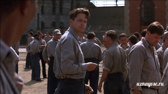 andy dufresnes search for a perfect world in the shawshank redemption