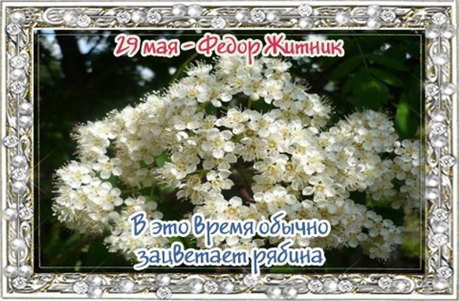 http://itd0.mycdn.me/image?id=869792214823&t=20&plc=WEB&tkn=*ApXhkl0kwvH30teMhCY2xcvh-Rw