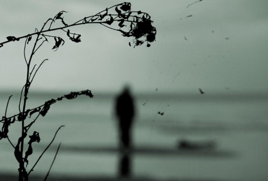 Следы путала и долго медленно наши ветрено