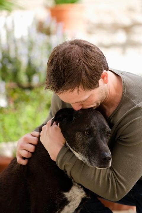 парень любит по собачье