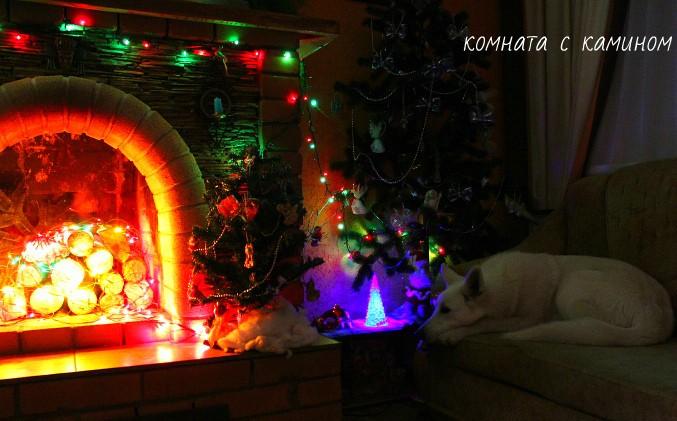 Предлагаем встретить Новый год в загородном благоустроенном доме в с.Ая (Горный Алтай) дом 83 м2.